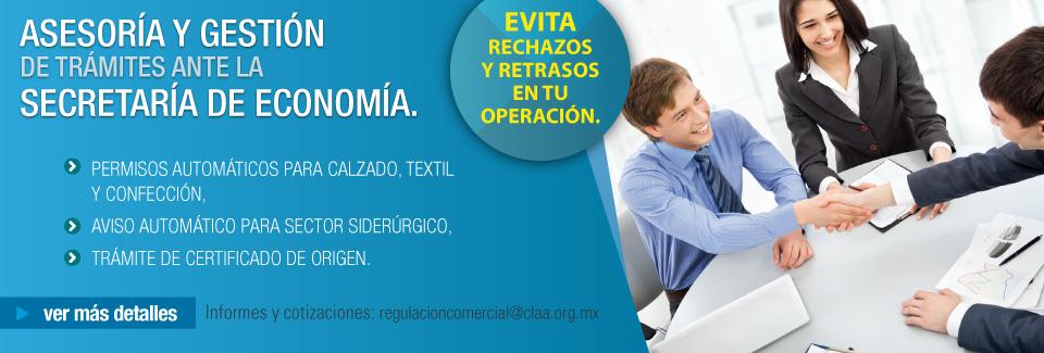 Asesoría y Gestión de Trámites ante la Secretaría de Economía.
