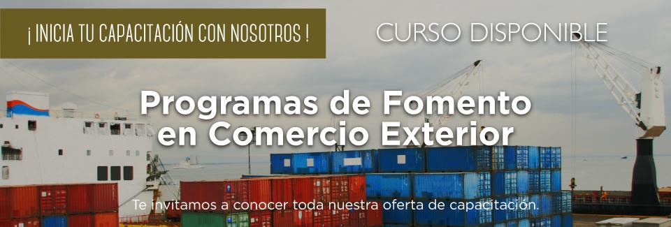 Curso: Programas de Fomento en Comercio Exterior